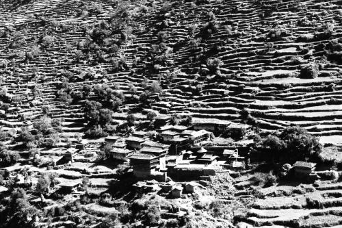 12_terraces